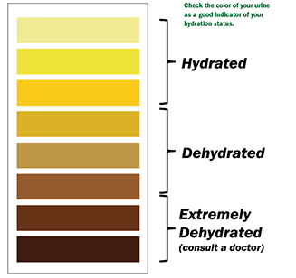 Hydration Chart For Urine